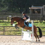 Holly on Penny Showjumping