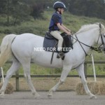 Shibumi Fun Day Southern Highlands equestrian dressage bundanoon kids riding camps lessons