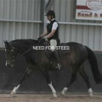 Shibumi Fun Day Southern Highlands equestrian dressage bundanoon